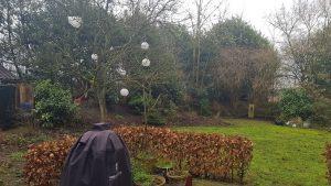 tuinontwerp Elusie Nijmegen tuinarchitect hovenier